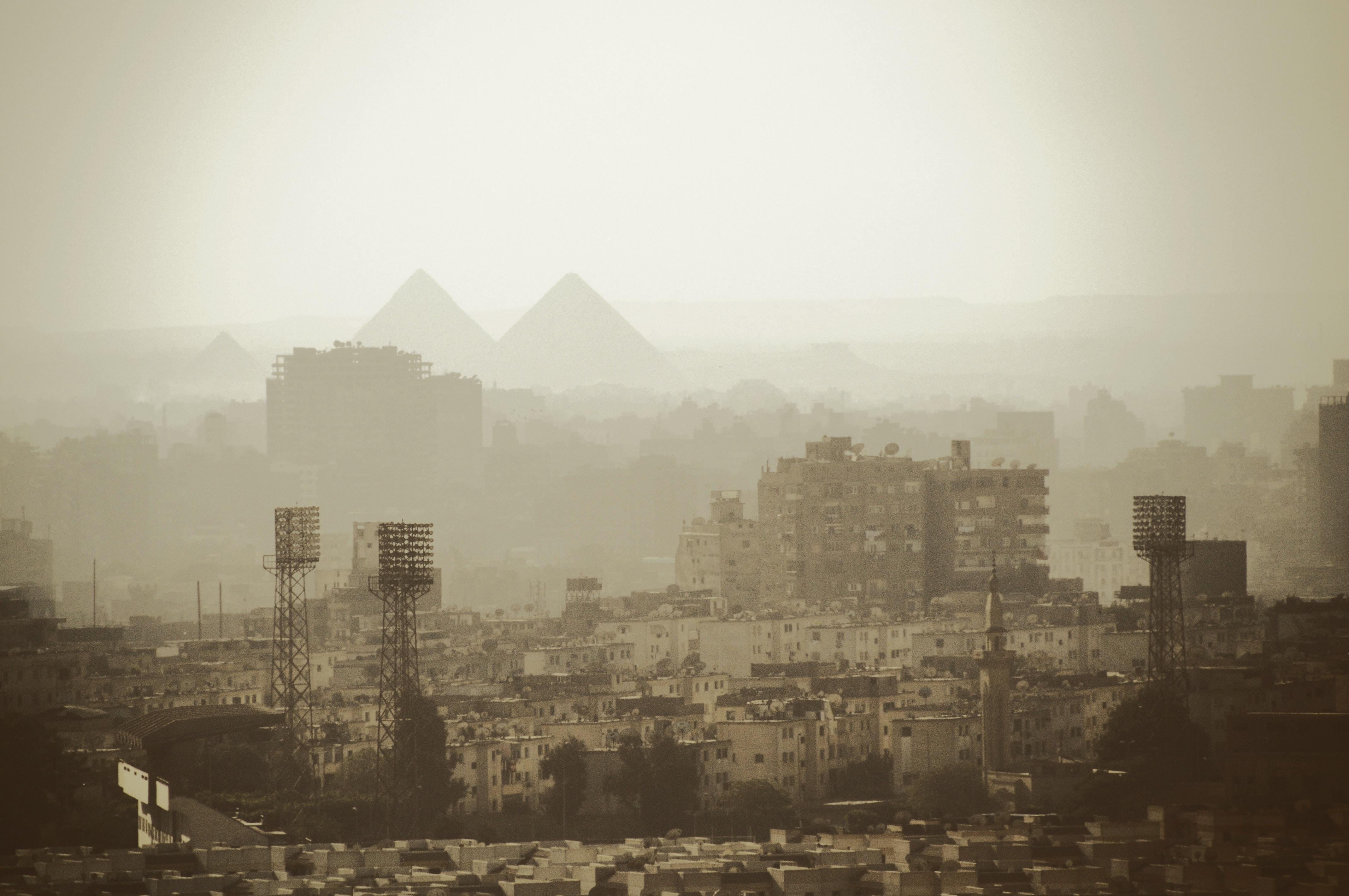 Amnesty International dénonce une campagne de phishing sophistiquée visant des défenseurs des droits de l'homme égyptiens